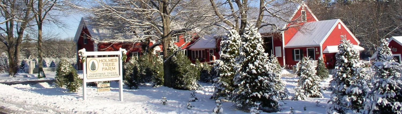 Holmes Tree Farm